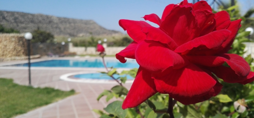 DIMITRIS RESORT HOTEL